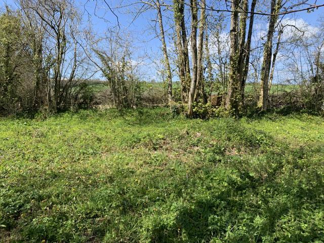 Land At Crossview, Dean Prior, Buckfastleigh, Devon